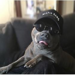 Mafia Gang Black